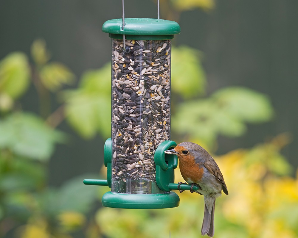 Ring-Pull™ Seed Feeder