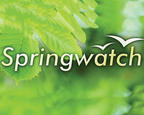 BBC Springwatch Returns for 2017!